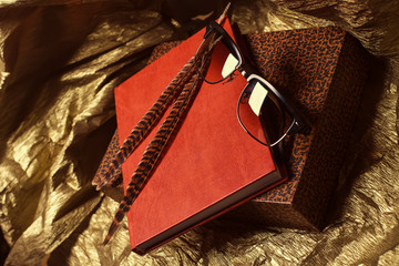 Fashion glasses and feathers on leather notebook and retro box