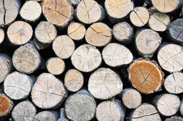 Stacked log background from natural tree timber