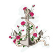 Anchor entwined with rose flowers