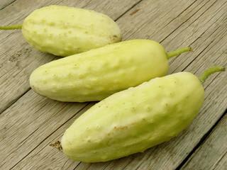 white home grown cucumbers