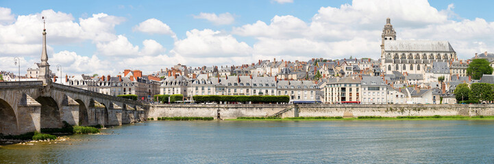 Blois Cityscape Panorama France