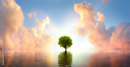 canvas print picture Baum im See