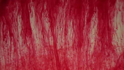 red dye in water