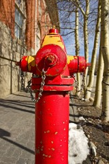 Red City Fire Hydrant