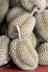 The durian fruit.