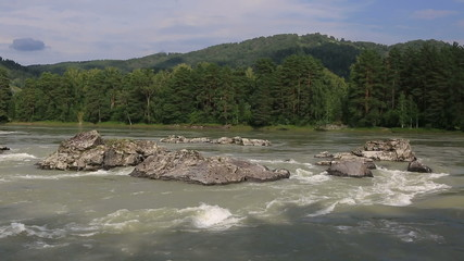Beautiful summer landscape mountain river Katun.