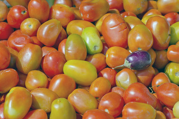 tomato vegetable background