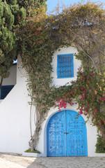 Blue door in Sidi Bou Said,Tunisia