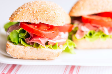 Prosciutto sandwich with tomato and arugula horizontal