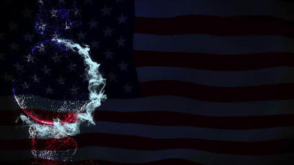 Usa Flag and Empty Particles