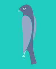 swallow bird vector illustration, hand drawn