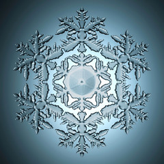 Single perfect snowflake.