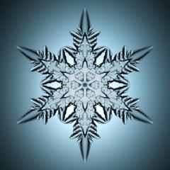 Single perfect snowflake.