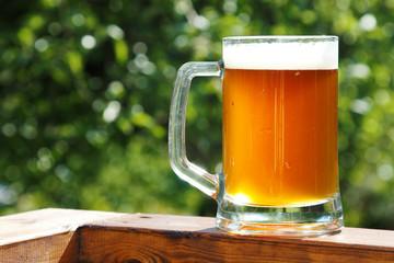 cold beer mug in sunny summer day