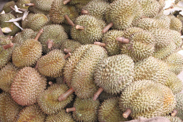 Fresh durian fruit.