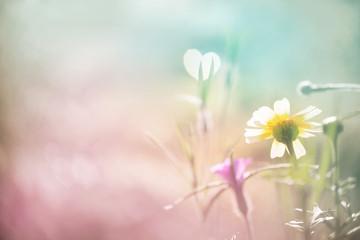 Liebe, Sehnsucht - abstrakter Hintergrund mit Blüte und Herz