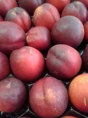 Frutas albaricoque