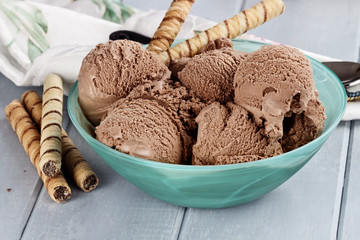 Bowl of Rich Dark Chocolate Ice Cream