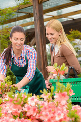 Gardener woman advising customer buying plants