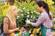 Florist give advice to customer woman plants