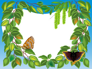 birch foliage frame wit two butterflies