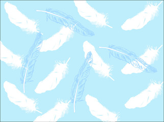 light blue and white feathers background