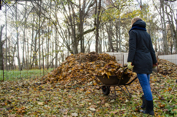 girl brought barrow leaves thrown in compost heap