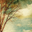 Grunge vintage nature background