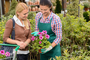 Garden center worker show customer potted flower
