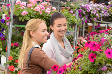 Two customer woman choose flowers garden center
