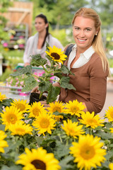 Smiling customer woman shopping for potted sunflower
