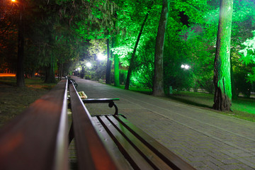 wooden bench in a tropical park and pedestrian road