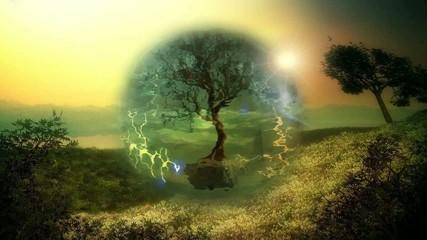 энергетический  щит  вокруг  дерева