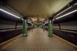 metro Brooklyn - 66958610