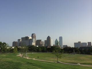 Dallas Skyline from Grigg's Park