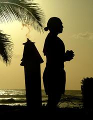 Hawaii Silhouette 2