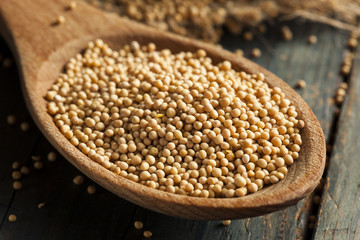Raw Organic Mustard Seeds