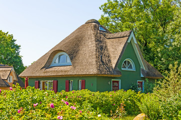 thatched-roof vacation home