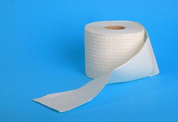 Single roll of toliet paper