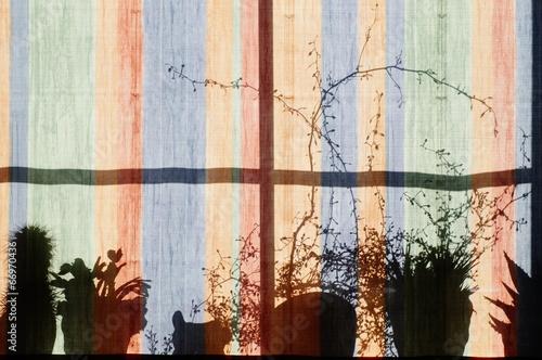canvas print picture Auf dem Fensterbrett