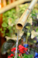 Water flows through small bamboo pipes