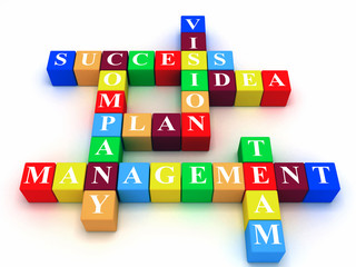 crossword - success; plan; idea; company; vision; management; te