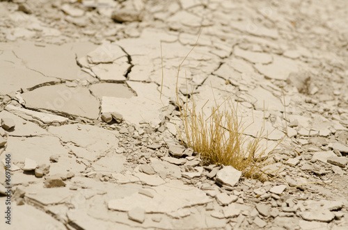 Foto Spatwand Droogte climate change