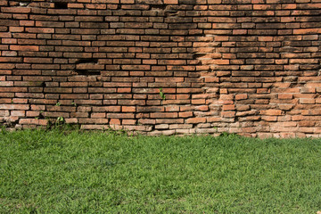 brick wall with green grass