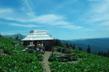 Carpathian nature.
