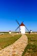 Obrazy na płótnie, fototapety, zdjęcia, fotoobrazy drukowane : Windmill