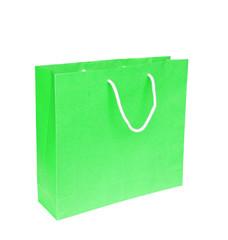 Blank green paper bag