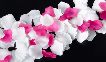 Composition with white and pink petals