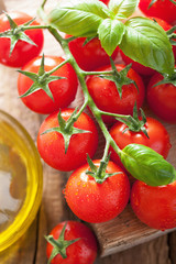 cherry tomatoes basil and olive oil over wooden background