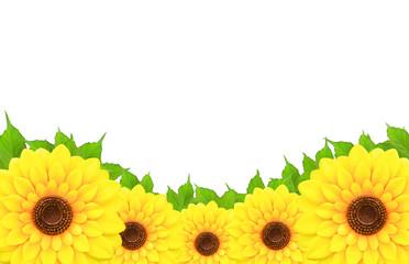 frameof sunflowers and leaf
